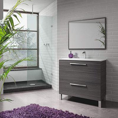 Mueble de baño o Aseo con Espejo y Marco a Juego, Incluido. Puerta abatible y Cierre amortiguado Color Gris Ceniza