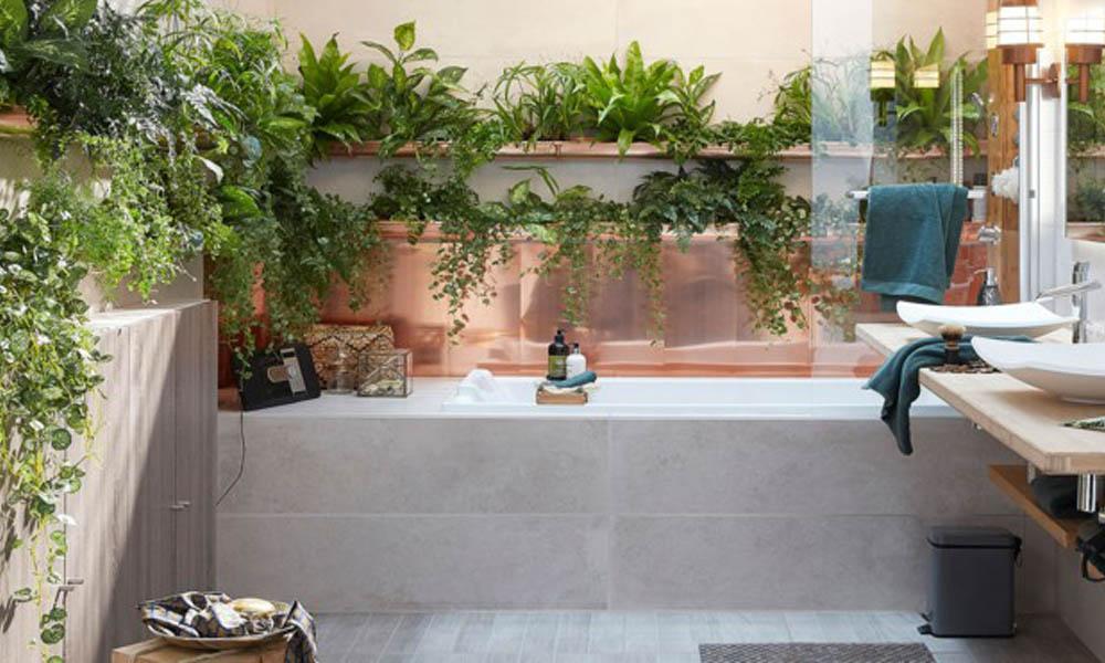 Las mejores plantas para tu cuarto de baño