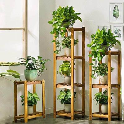 Plantas para tu cuarto de baño