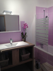 plantas cuarto de baño orquideas