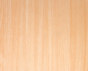 madera de haya